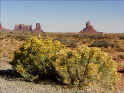 Nov 6, 2007, @  2pm,  Monument Valley on US 163 - (Lt to Rt) Stagecoach, Bear & Rabbit, Castle & Big Indian Buttes.