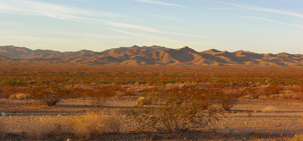 nov 8, 2007. @7:45am, Mojave Desert and the Dead Mountains Wilderness, CA.