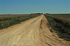 A farm road in the Oklahoma Panhandle.<br /> Photo © Carl Clark