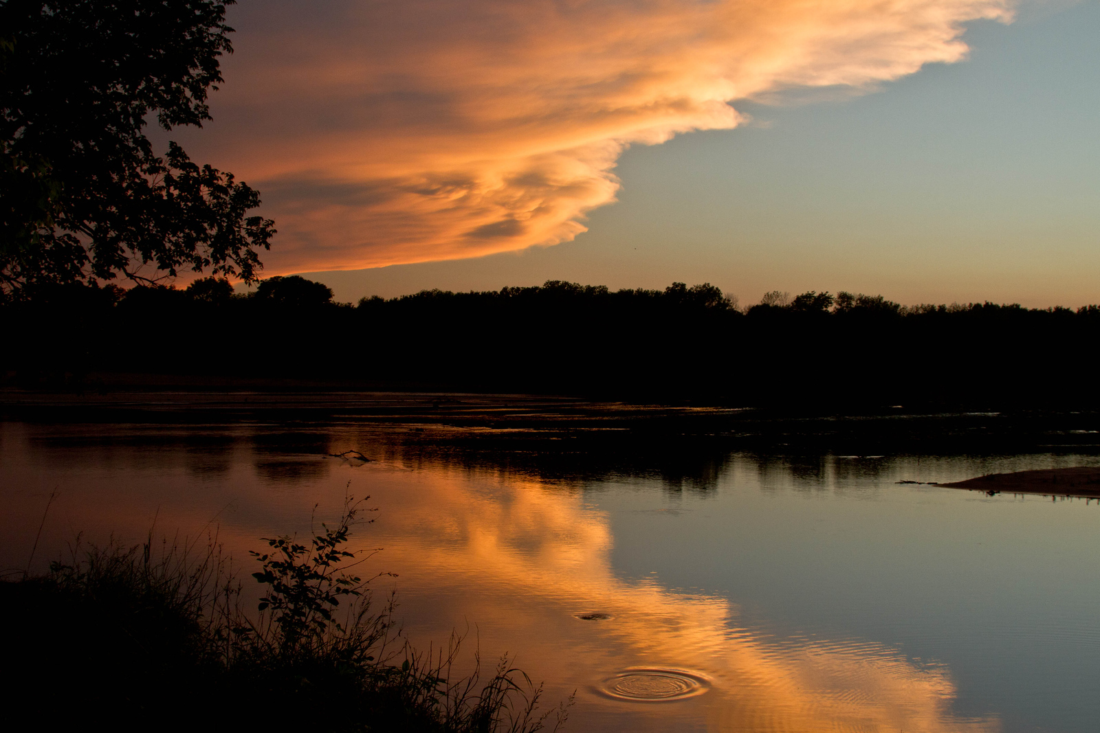 A Kansas river casts its spell.  Near Arkansas City, Kansas, where 2 rivers, the Arkansas and Grouse rivers meet.<br /> Photo © Cindy Clark