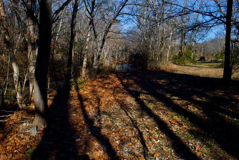 Long autumn shadows near Maeystown, Ilinois.<br /> Photo © Carl Clark