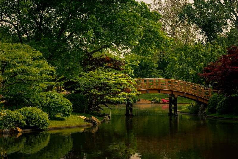 A lovely spring morning spent at the Missouri Botanical Gardens in St. Louis.<br /> Photo © Cindy Clark