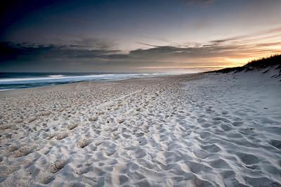 #203 Island Beach State Park, NJ.