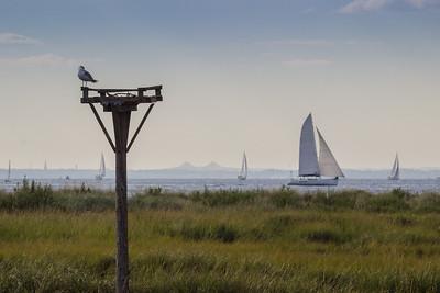 Sailboats on Raritan Bay