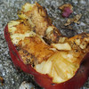 In case it's not entirely obvious, this is a discarded apple core.  I am curious what all the black things are, though.