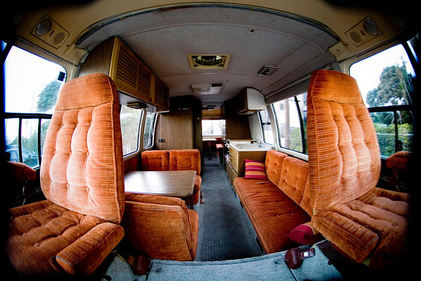 The interior of the Laughing Mongoose