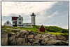 """Nubble Light"""