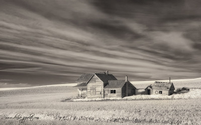Old Farmhouse IR