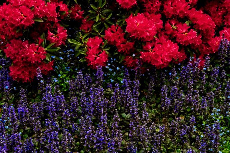 Kubota Gardens, Seattle.<br /> Photo © Carl Clark