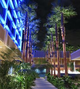 2012 - Disneyland Hotel at night