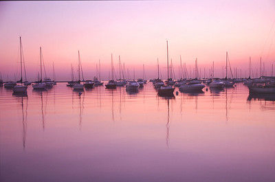 Boats at Dawn, Chicago