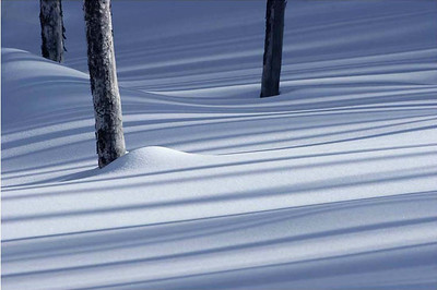 Sugary snow shadows, Yellowstone National Park