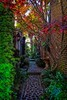 An alleyway in Charleston.<br /> Photo © Carl Clark