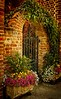 What a gracious way to enter one's backyard. This was taken in Charleston.<br /> Photo © Cindy Clark