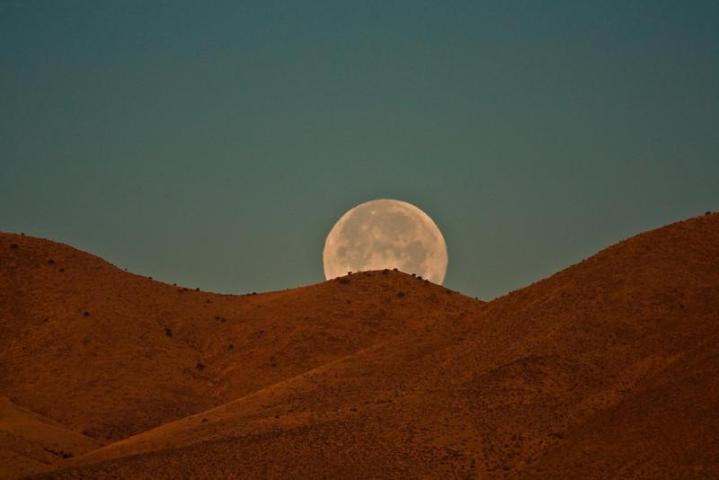 Surreal landscape at Bosque del Apache.<br /> Photo © Cindy Clark