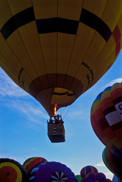 Color on display during the morning ascension at the Albuquerque International Balloon Fiesta.<br /> Photo © Carl Clark