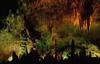 Pure fantasy underground - Carlsbad Caverns.<br /> Photo © Cindy Clark