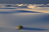 Hypnotic lines at White Sands.<br /> Photo © Cindy Clark