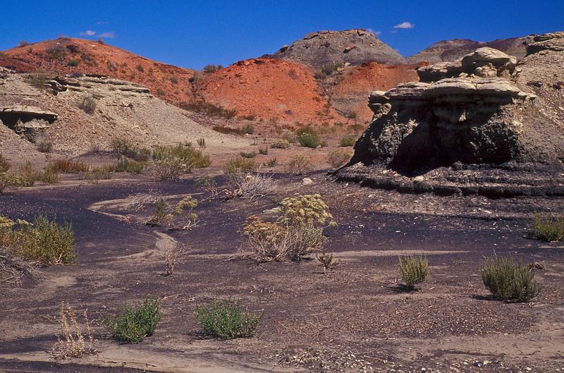Landscape that defies description - the Bisti Badlands.<br /> Photo © Cindy Clark