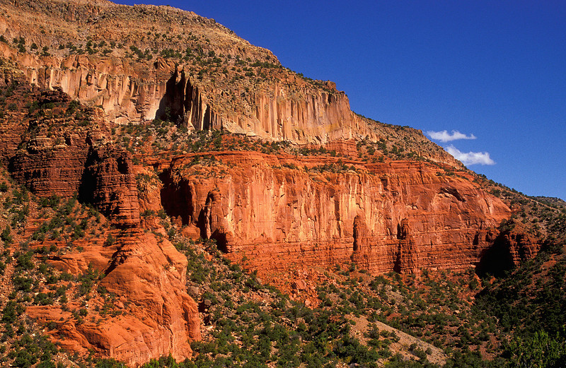 A briliant canyon wall is set off by a equally brilliant New Mexico blue sky in the Jemez Mountains.<br /> Photo © Cindy Clark