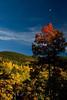 Enchanting light on the hills of the Sangre de Cristo Mountains.<br /> Photo © Carl Clark