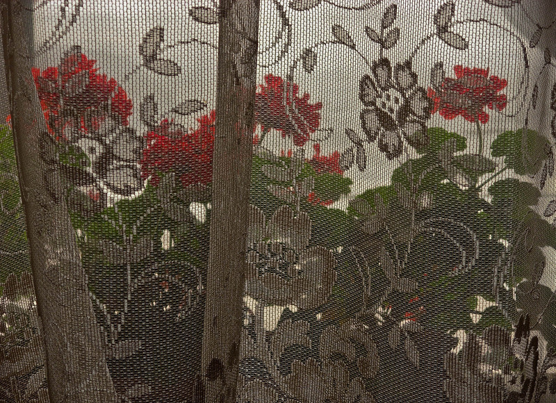Lace curtains and geraniums add to the charm of the Eklund Hotel in Clayton.<br /> Photo © Cindy Clark