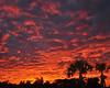 Sky of Fire