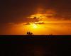 Sails at Sunset