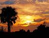 Okeechobee Sunset