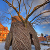 The University of Kansas - The Bedazzler by Patrick Dougherty