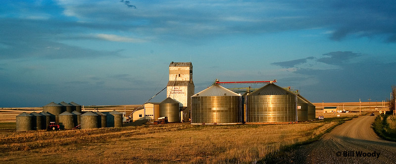 Grain Elevator at Molt, MT