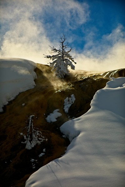 Ice, snow and steam at Mammoth Hot Springs in Yellowstone.<br /> Photo © Carl Clark