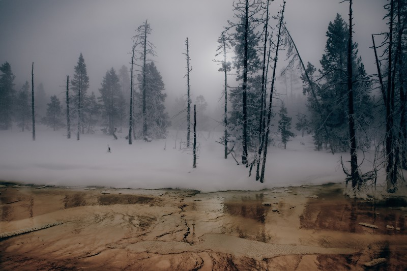 A hydrothermal pool against a backdrop of steam at Yellowstone.<br /> Photo © Cindy Clark