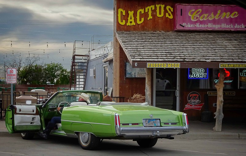 Scofflaw at Wall, South Dakota!<br /> Photo © Cindy Clark