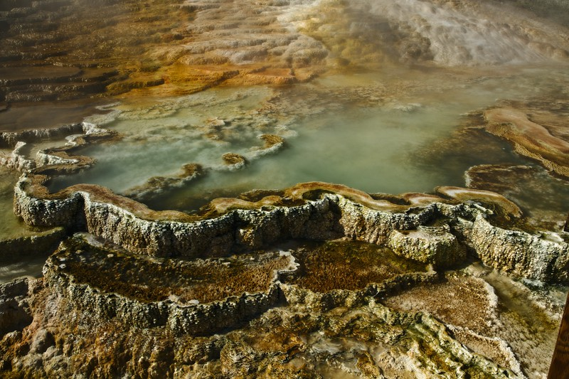 Detail of a hot pool at Mammoth Hot Springs.<br /> Photo © Cindy Clark