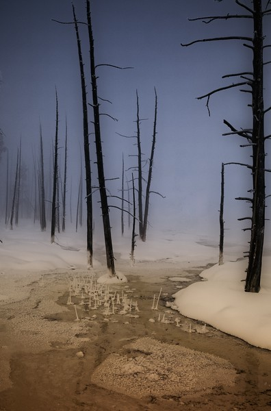 Hydrothermal stream at Yellowstone National Park.<br /> Photo © Cindy Clark