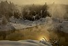 Morning sunlight streams through the geyser fog in Yellowstone.<br /> Photo © Carl Clark