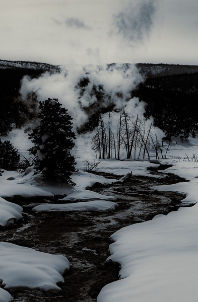 First morning in Yellowstone.<br /> Photo © Cindy Clark