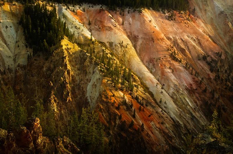 Morning sun lights up Yellowstone Canyon walls.<br /> Photo © Cindy Clark