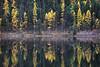 Salmon Lake Closeup, Montana