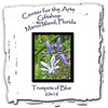 Trumpets of Blue