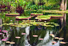 The Lagoon  16x24     $295