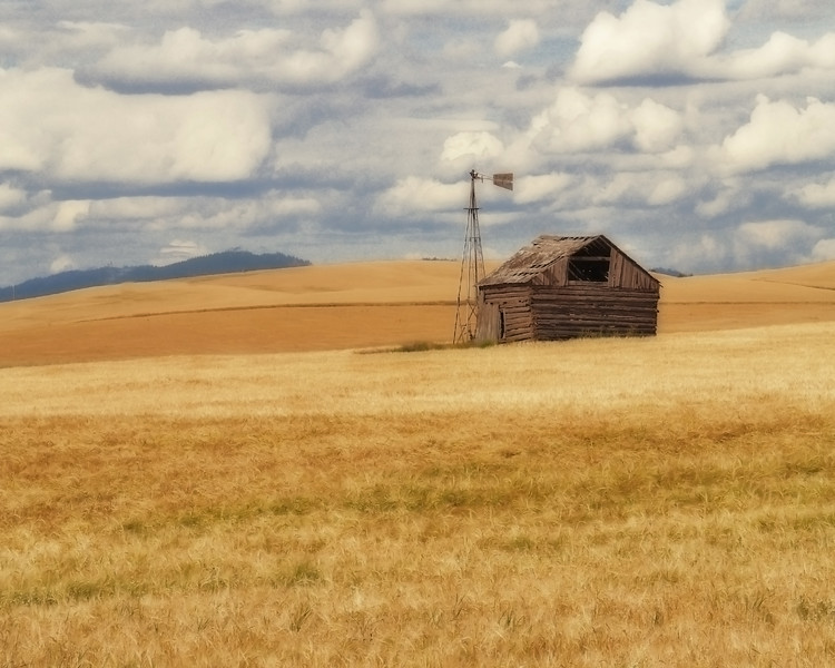 Palouse Shed<br /> Washington, USA