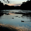 Dusk on the Chattahoochee
