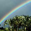 Waipahu Rainbow