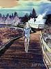 Strolling Surreality 17x14    $325