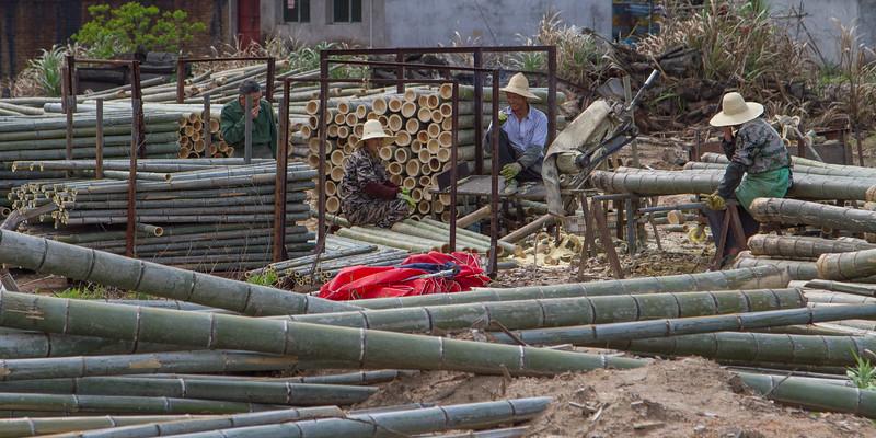 Men taking break during cutting Bamboo