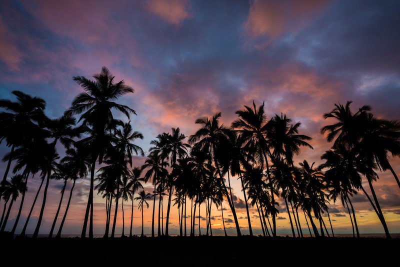 A Long Goodbye - Pu'uhonua o Honaunau - Big Island, Hawaii