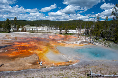 Geyser Basin Colors