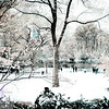 Winter Wonderland - Central Park, NYC